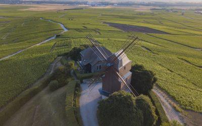 Les Alentours de Reims⎜Au coeur des vignes de Champagne, et bien plus