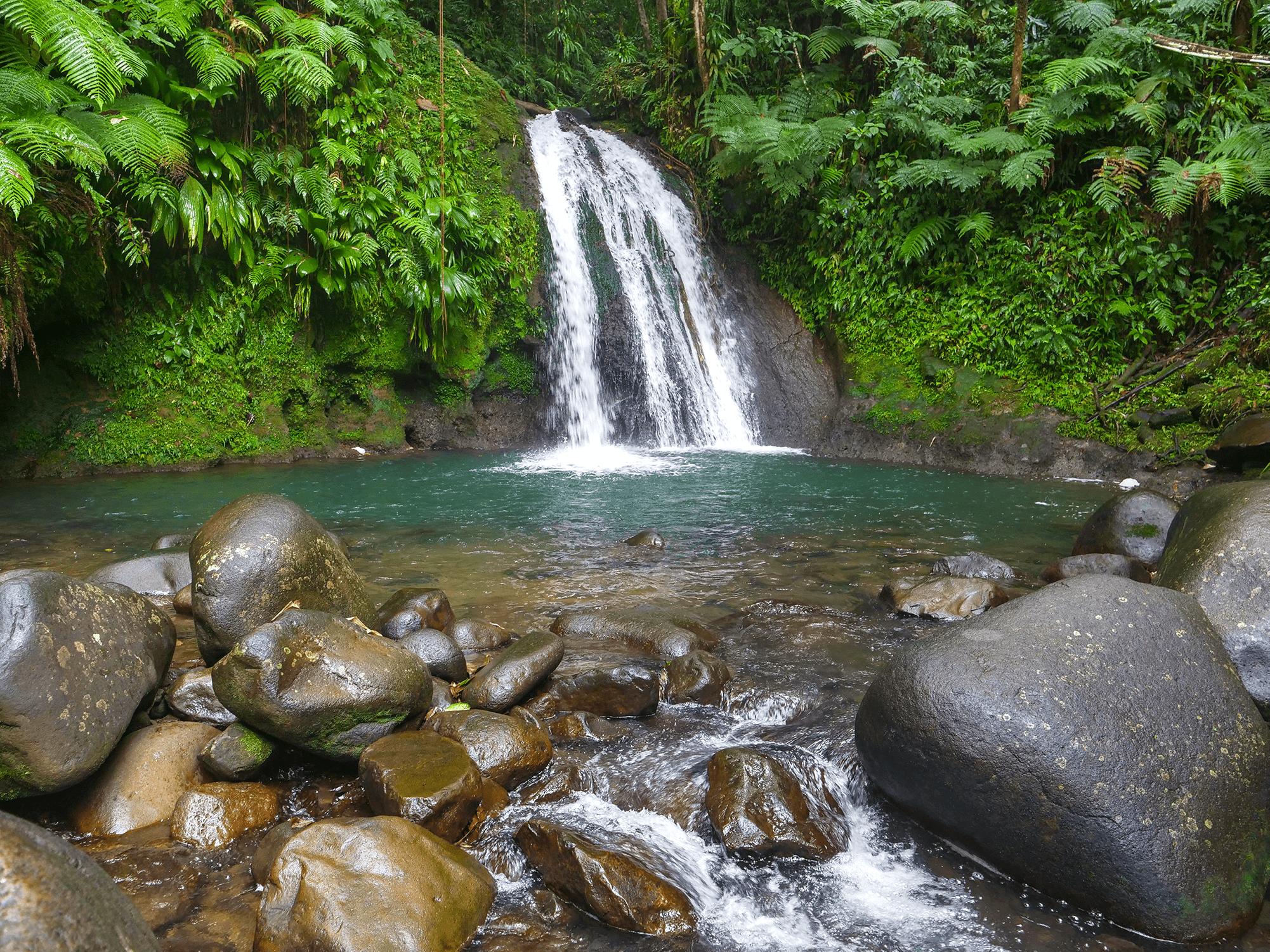 cascade-ecrevisses-basse-terre-guadeloupe